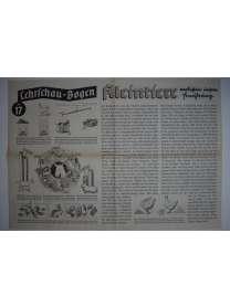 Lehrschau-Bogen - Nr. 17/17a - Kleintiere