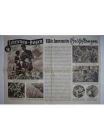 Lehrschau-Bogen - Nr. 16/16a - Wir sammeln Heilpflanzen